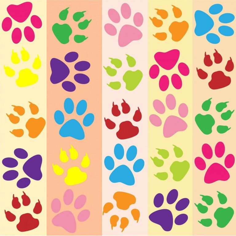 Paw Prints Animal Rescue
